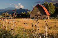 August in Wallowa County, Oregon.  A valley of farmland and rustic barns, surrounded by glacially carved mountains.
