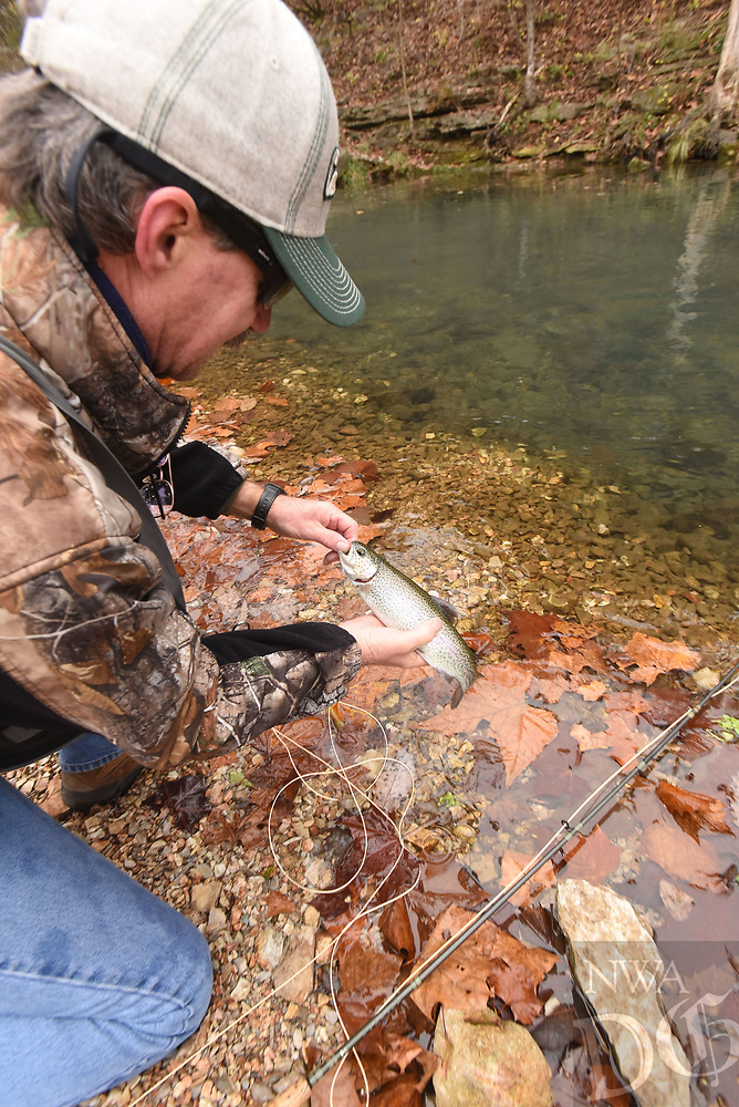 NWA Democrat-Gazette/FLIP PUTTHOFF <br />Buzzard releases one of several trout he caught Nov. 8 2018 at Roaring River State Park.