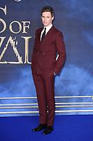 """Eddie Redmayne<br /> arriving for the """"Fantastic Beasts: The Crimes of Grindelwald"""" premiere, Leicester Square, London<br /> <br /> ©Ash Knotek  D3459  13/11/2018"""