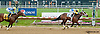 Vicarious Won winning at Delaware Park on 5/27/13.