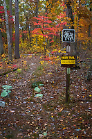 Ozone Trailhead of the Ozark Highlands Trail.  The trail runs for 218 miles through the Ozark National Forest in Arkdansas.