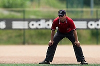 23 May 2009: Umpire Serge Makouchetchev is seen during the 2009 challenge de France, a tournament with the best French baseball teams - all eight elite league clubs - to determine a spot in the European Cup next year, at Montpellier, France. Savigny wins 4-1 over Senart.