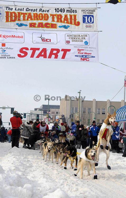 Iditarod musher Bruce Linton and jumping lead dog waiting to leave Anchorage, Alaska
