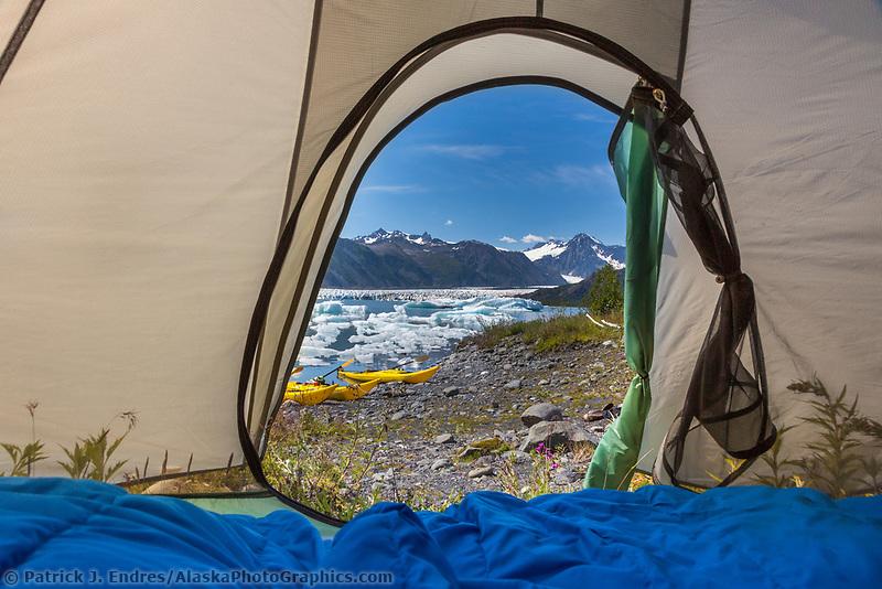 Kenai Fjords National Park, Kenai Peninsula, Alaska.