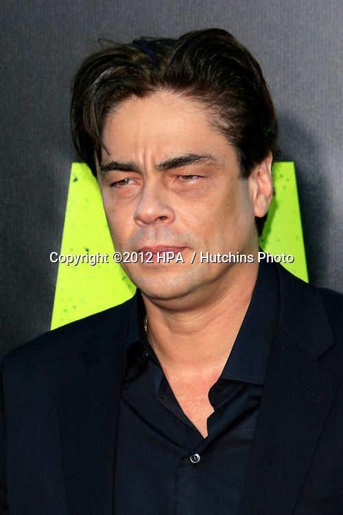"LOS ANGELES - JUN 25:  Benicio Del Toro arrives at the ""Savages"" Premiere at Village Theater on June 25, 2012 in Westwood, CA"
