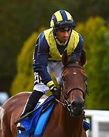 Sagely ridden by Silvestre de Sousa goes down to the start during Ladies Evening Racing at Salisbury Racecourse on 15th July 2017