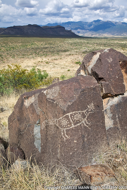 A boulde with a petroglyph of an animal figure is framed by the mysterious Sacramento Mountains  at Three Rivers State Park near Tularosa, New Mexico
