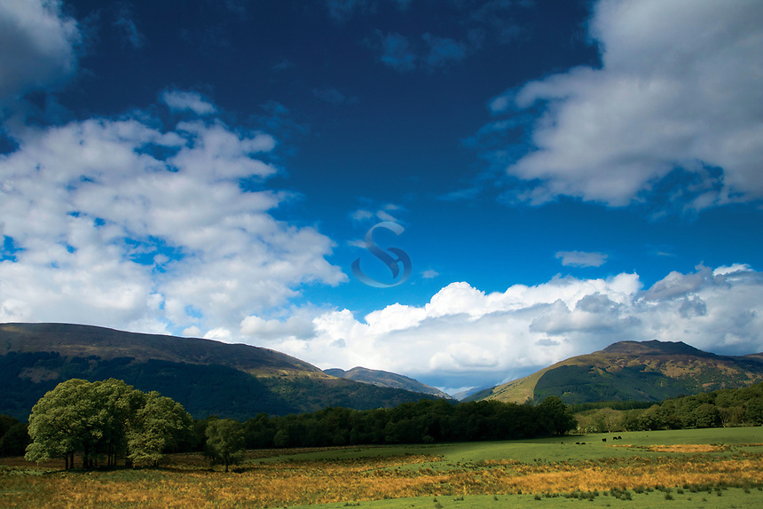 Beinn Breac and the Luss Hills, near Rowardfennan, Loch Lomond and the Trossachs National Park, Stirlingshire