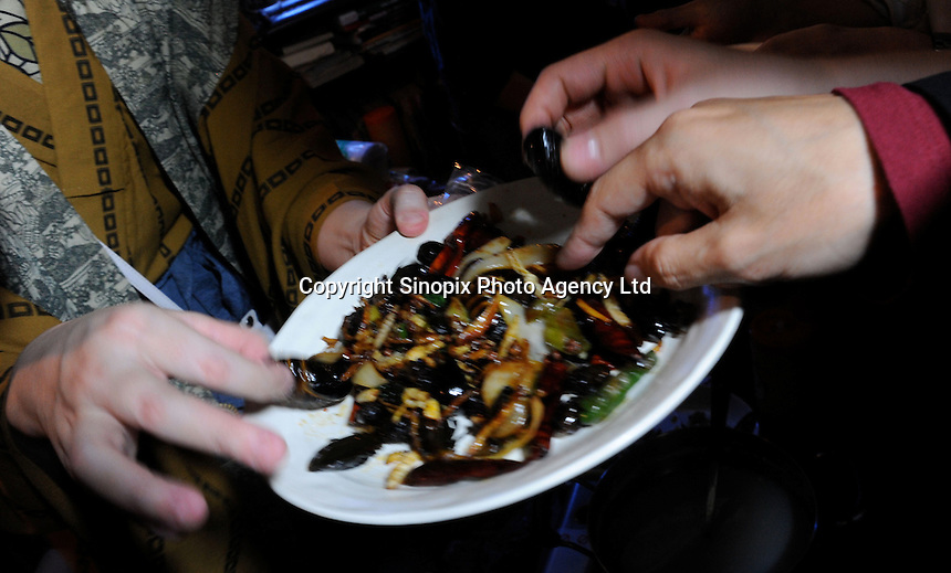 Bug eaters choose from fried cock-roaches, cicada larvae and grass-hoppers at a bug eating party in Tokyo, Japan. The bug eating movement is gaining in popularity in Japan where bug eating gourmet cooking parties are sold-out.  The insects are seen as the ultimate challenge in the world's gastronomical capitol but alo seen as an important alternative source of protein for the future and even the Japanese Space Program is looking intot eh use of using insects as food in space travel.