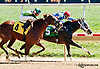 Miss Speaker winning at Delaware Park on 9/18/13 <br /> Gary Capuano's 1000th training victory