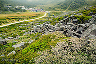 Image Ref: CA296<br /> Location: Charlotte Pass<br /> Date: 27 Jan 2016