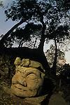 God N, Ceiba tree, temple, Maya, Copan, Honduras, Classic period