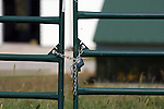 An agriculture pasture on the grounds of an Agricultural school College of the Ozarks in Branson Missouri Focus on the gate lock