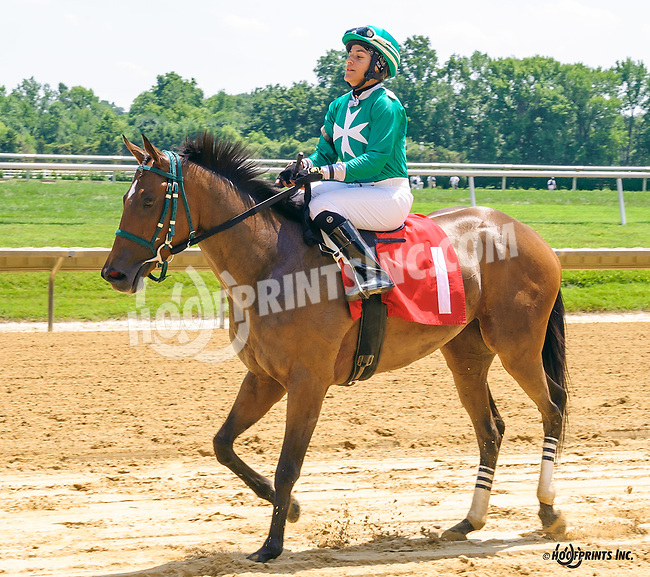 Sally's News winning at Delaware Park on 7/18/16