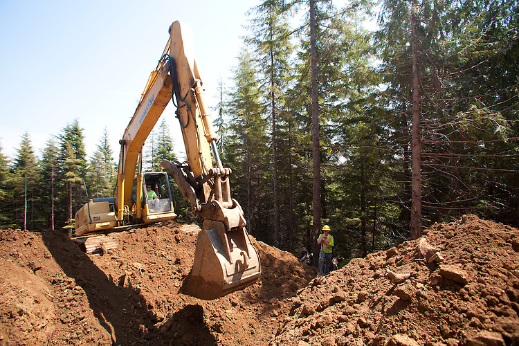 Ellsworth Creek Preserve, forest restoration, culverts, road building to allow logging road removal, Nature Conservancy, Washington Chapter, Emerald Edge Project, Willapa Bay, Naselle River drainage, Pacific County, Washington Coast, Washington State, Pacific Northwest, United States,