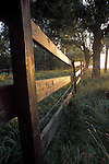 Horse Corral Fence Reflecting Rising Sun