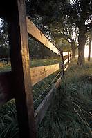 Horse Corral Fence Reflecting Rising Sun