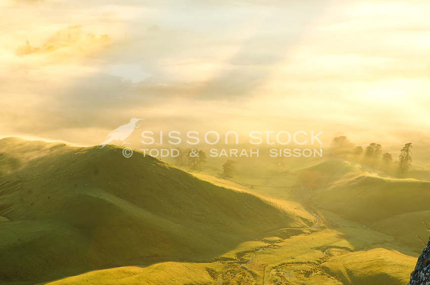 View from Te Mata Peak at sunrise on to mist covered farm land, Hawkes Bay, New Zealand