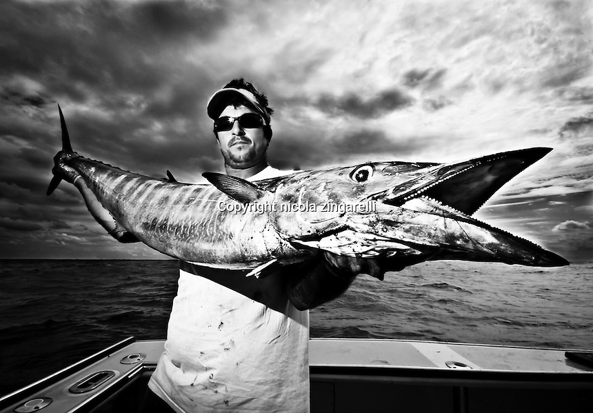 October 2008, Bermuda. A big Wahoo (acanthocybium solandri) caught in the waters of Bermuda by a sport fisherman in his 30s on live bait. Black & white