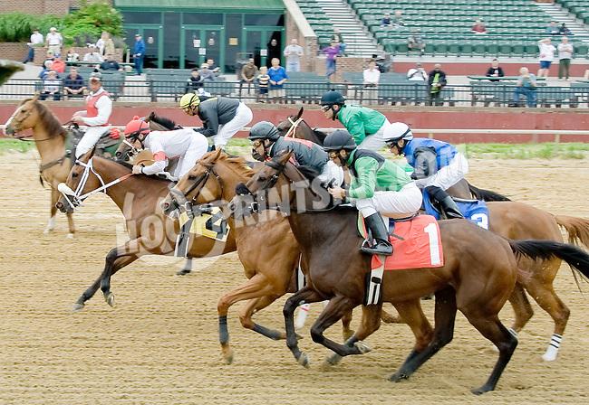 Cape Girl winning at Delaware Park on 5/21/12