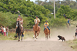 Horse racing in the streets of Hanga Roa, Rapa Nui, Chile