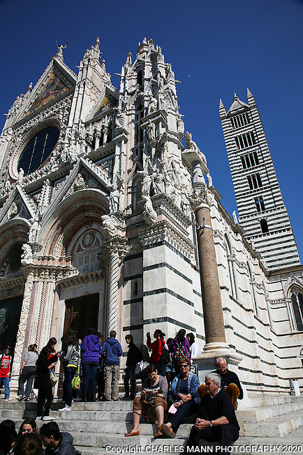 The cathedral at Siena is made of an unusual combination pattern of black and white marble.