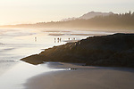 People on the beach at low tide of the ocean, Green Point, Pacific Rim National Park Reserve, Long Beach, Tofino, Vancouver Island, BC, Canada