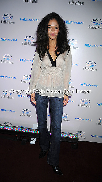 "actress Sherri Saum..posing for photographers at the party for The HBO Documentary  ""Le Cirque: A Table in Heaven"" at Le Cirque..in New York City on December 3, 2008.....Robin Platzer, Twin Images"