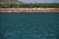 Tres Marias_MG, Brasil...Represa Tres Marias com o Rio Sao Francisco, Minas Gerais...Tres Marias dam, in Sao Francisco river, Minas Gerais...Foto: LEO DRUMOND / NITRO