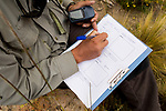 Andean Mountain Cat (Leopardus jacobita) biologist, Juan Reppucci, taking data on camera trap location, Abra Granada, Andes, northwestern Argentina