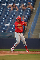 Palm Beach Cardinals shortstop Jose Martinez (12) at bat during a game against the Tampa Yankees on July 25, 2017 at George M. Steinbrenner Field in Tampa, Florida.  Tampa defeated Palm beach 7-6.  (Mike Janes/Four Seam Images)