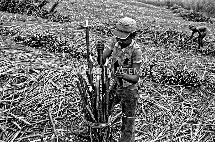Trabalho infantil em canavial na Zona da Mata, Pernambuco. 1979. Foto de Juca Martins.
