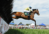4th Charles Bird Maiden Claiming Hurdle - Change of View