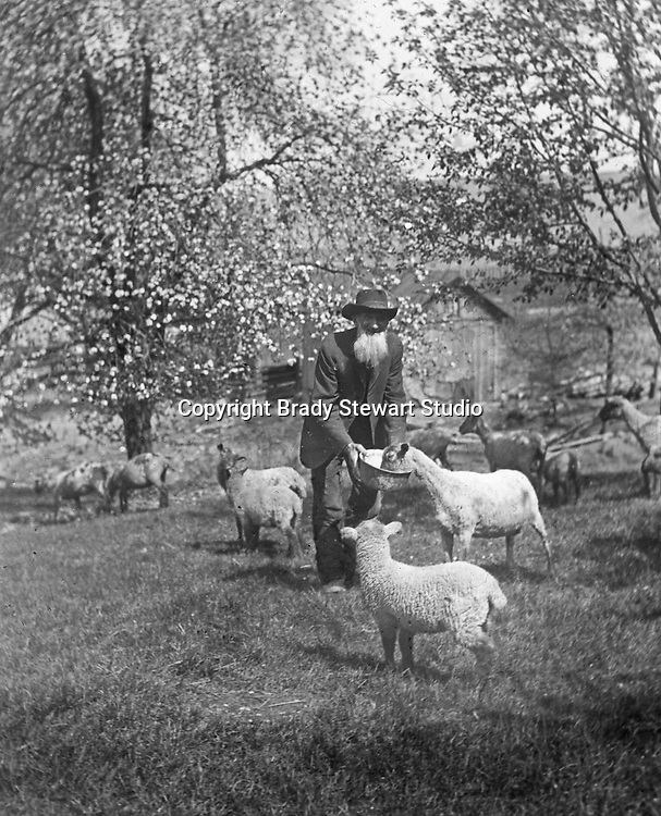 Jerome ID: A Sheep Herder feeding the flock - 1910.  Brady Stewart and three friends went to Idaho on a lark from 1909 thru early 1912. As part of the Mondell Homestead Act, they received a land grant of 160 acres north of the Snake River.  For 2 ½  years, Brady Stewart photographed the adventures of farming along with the spectacular landscapes.