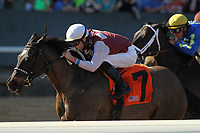 HOT SPRINGS, AR - MARCH 18: Streamline #7, ridden by Chris Landeros wins the Azeri Stakes race at Oaklawn Park on March 18, 2017 in Hot Springs, Arkansas. (Photo by Justin Manning/Eclipse Sportswire/Getty Images)