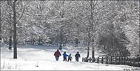 My Final Photo - December 2004