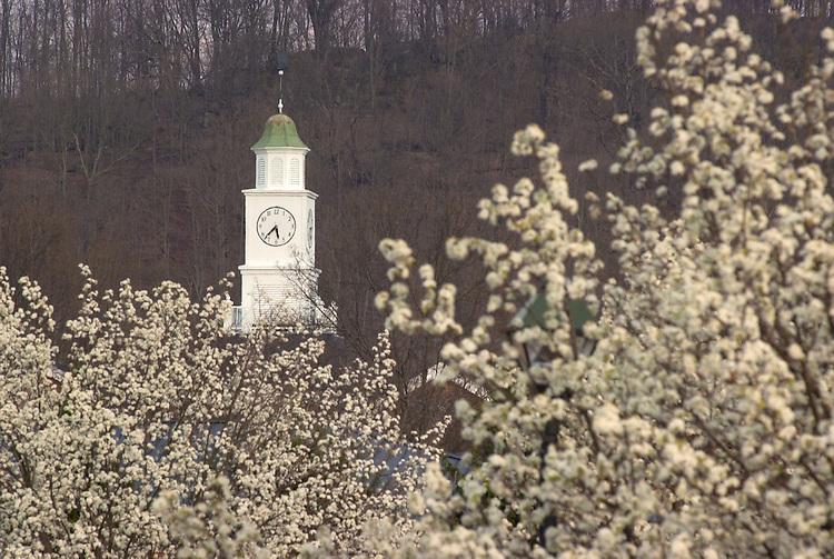 16376Spring Campus Shots 2004
