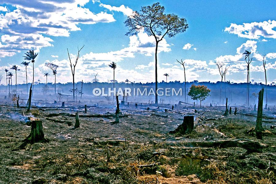 Desmatamento por queimada no Pará. 1999. Foto de Adriano Gambarini.
