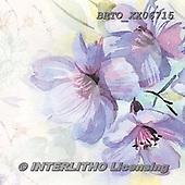 Alfredo, FLOWERS, BLUMEN, FLORES, paintings+++++,BRTOXX06715,#f# ,retro ,everyday
