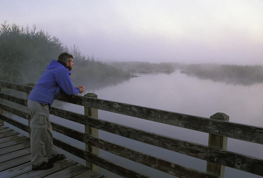 Man overlooking estuary, Spencer Island, Everett, Snohomish River Estuary, Washington