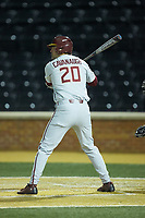Kyle Cavanaugh (20) of the Florida State Seminoles pinch-hits in the game against the Wake Forest Demon Deacons at David F. Couch Ballpark on March 9, 2018 in  Winston-Salem, North Carolina.  The Seminoles defeated the Demon Deacons 7-3.  (Brian Westerholt/Four Seam Images)