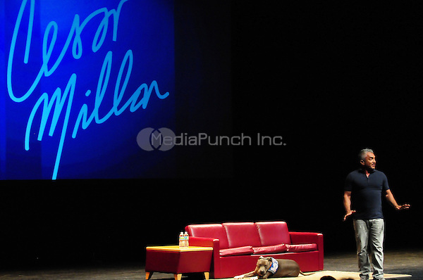 MIAMI BEACH, FL - JUNE 14: Professional dog trainer, bestselling author and 'Dog Whisperer' Cesar Millan speaks at Fillmore Miami Beach at Jackie Gleason Theater on June 14, 2013 in Fort Lauderdale, Florida. © MPI10/MediaPunch Inc