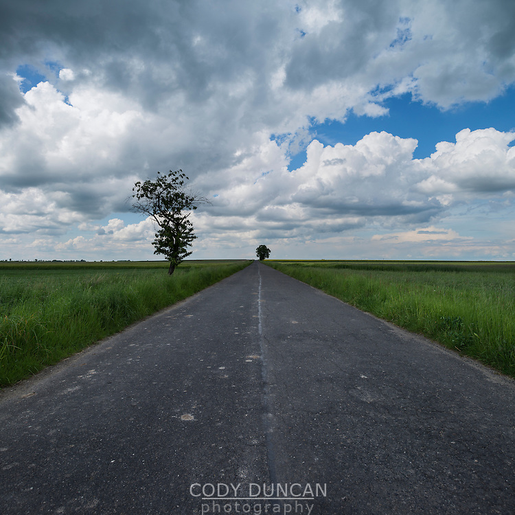 Rural coutryside road, Prudnik County, Opole Voivodship, Silesia, Poland
