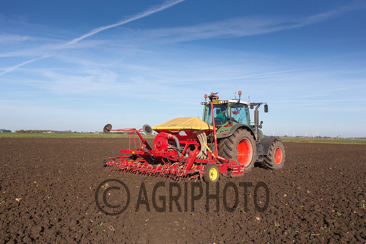 Drilling Winter Barley following sugar beet<br /> Picture Tim Scrivener 07850 303986<br /> tim@agriphoto.com<br /> &hellip;.covering agriculture in the UK&hellip;.