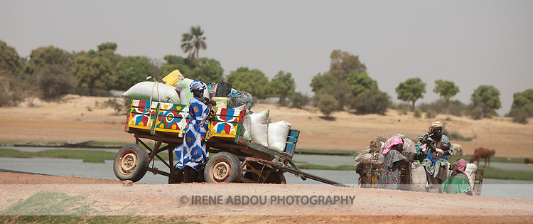 Families in colorfully-painted donkey carts wait for a canoe to take them across the river to the historic town of Djenne, Mali.