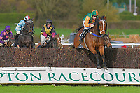 Tommy The Rascal ridden by Ross Chapman clears the last first time around in The Revived Inns Novices' Handicap Chase during Horse Racing at Plumpton Racecourse on 4th November 2019
