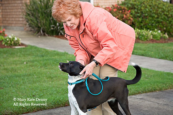 Mature red headed female fixes the collar of her black and white dog to walk outdoors in Louisiana