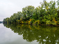 Totarm der kleinen Donau bei Kolarovo, Slowakei, Europa<br /> Cutoff of Small Danube River near Kolarovo, Nitriansky kraj, Slovakia Europe