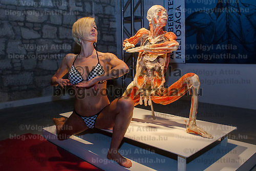 A model mimics a preserved human body on display at an exhibition in Budapest, Hungary on April 02, 2012. ATTILA VOLGYI