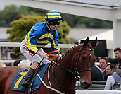 June 10th 2017, Chester Racecourse, Cheshire, England; Chester Races Horse racing; Jockey Franny Norton onboard Lonely the Brave in the Liverpool Gin Stakes